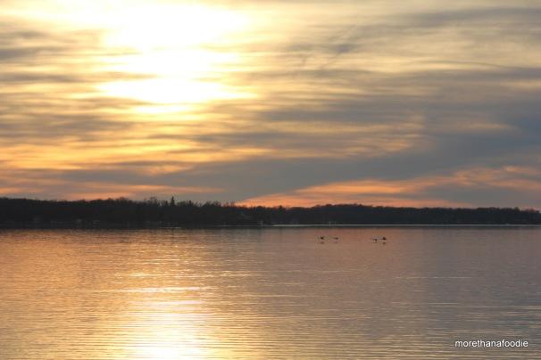 minnesota sunset swans flying lake
