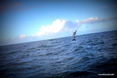 Off Coast of Kauai Hawaii
