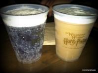 wizarding world of harry potter universal studios orlando floriida
