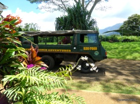 princeville things to do in kauai zipndip