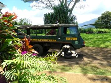 princeville things to do in kauai zipndip