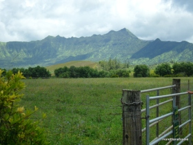 princeville ranch kauai hawaii