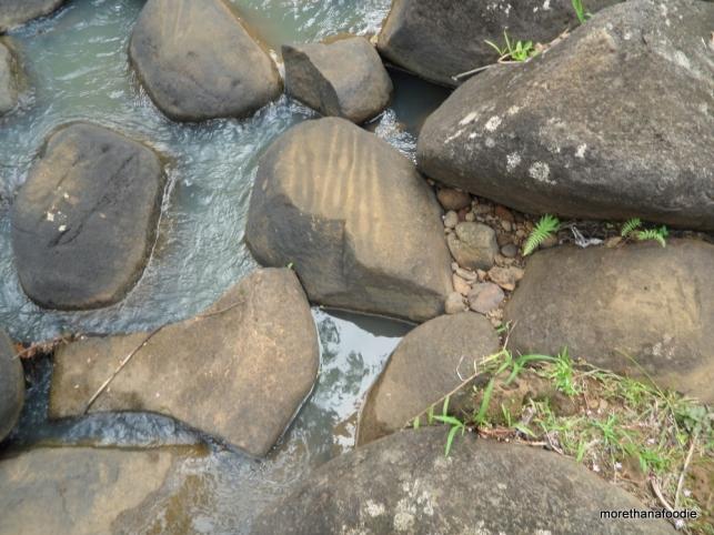 ancient hawaiians left their marks on these rocks