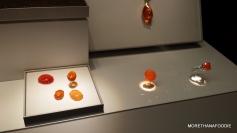chicago museums gem exihibit
