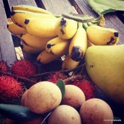 fruit bananas vietnam
