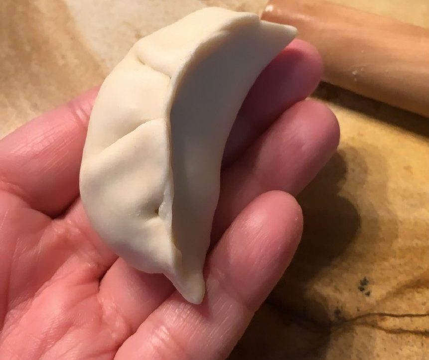 homemade pork dumplings